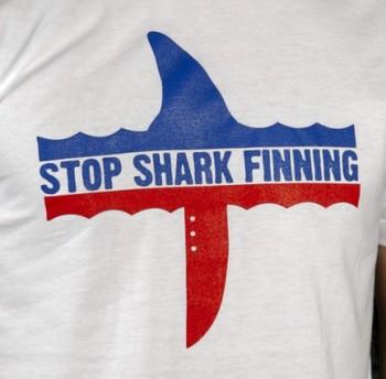 Organic Cotton T-shirt: Stop Shark Finning (white)