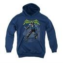 Nightwing DC Comics Youth Hoodie Nightwing Charcoal Kids Hoody