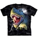 T-Rex Dinosaurs Kids Shirt Tie Dye Lightning T-shirt Tee Youth