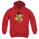 Teen Titans Go Youth Hoodie Robin Red Kids Hoody