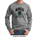 Yoga Kale University Lights Sweatshirt