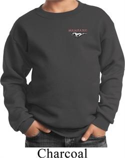 Kids Ford Sweatshirt Mustang Pocket Print Youth Sweat Shirt