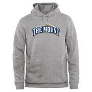Mount St. Mary's Mountaineers Big & Tall Classic Primary Pullover Hoodie - Ash