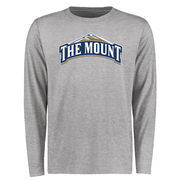 Mount St. Mary's Mountaineers Big & Tall Classic Primary Long Sleeve T-Shirt - Ash