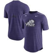 TCU Horned Frogs Nike Player Breathe Performance T-Shirt - Heathered Purple
