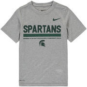Michigan State Spartans Nike Youth Legend Staff Performance T-Shirt - Heathered Gray