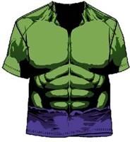 Marvel 's Hulk Costume
