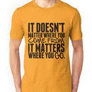It Doesn't Matter Where You Come From It Matters Where You Go - Frank Turner Lyric T- Unisex T-Shirt