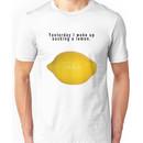 "90's Alternative ""Yesterday I woke up sucking a lemon"" Rock  Unisex T-Shirt"