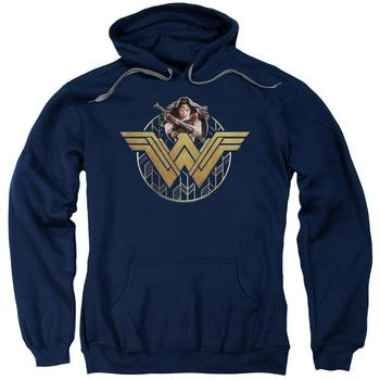 Wonder Woman Movie Power Stance & Emblem Adult Navy Hoodie from Warner Bros.