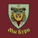 Durmstrang: We are the Storm T-Shirt