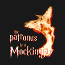 When Harry met Katniss (Catching Fire Edition) T-Shirt