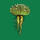 ASTROPHYTUM Sp. (Variant) By Agacactus T-Shirt