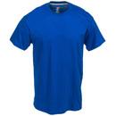 Hanes Shirts: Men's 4200 DRY Moisture-Wicking X-Temp Deep Royal T-Shirt