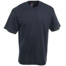 Hanes Shirts: Men's Black 5250T BLK 100% Cotton Tagless T-Shirt